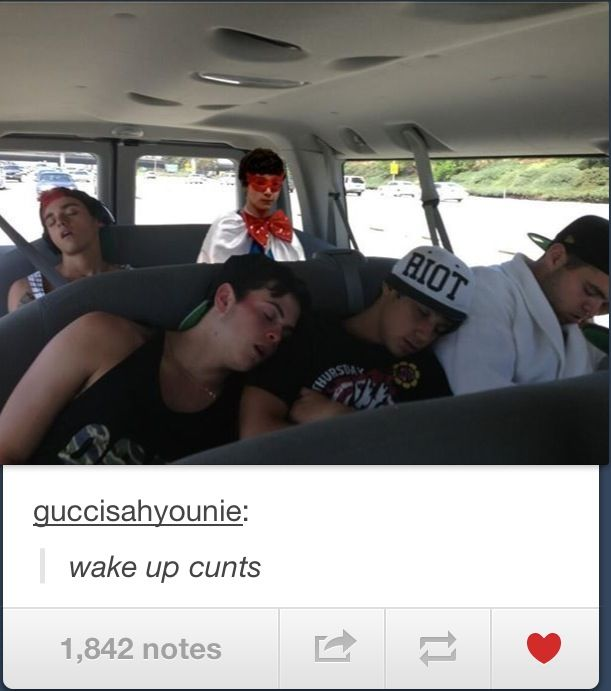 Funny tumblr comment on the Janoskians photo