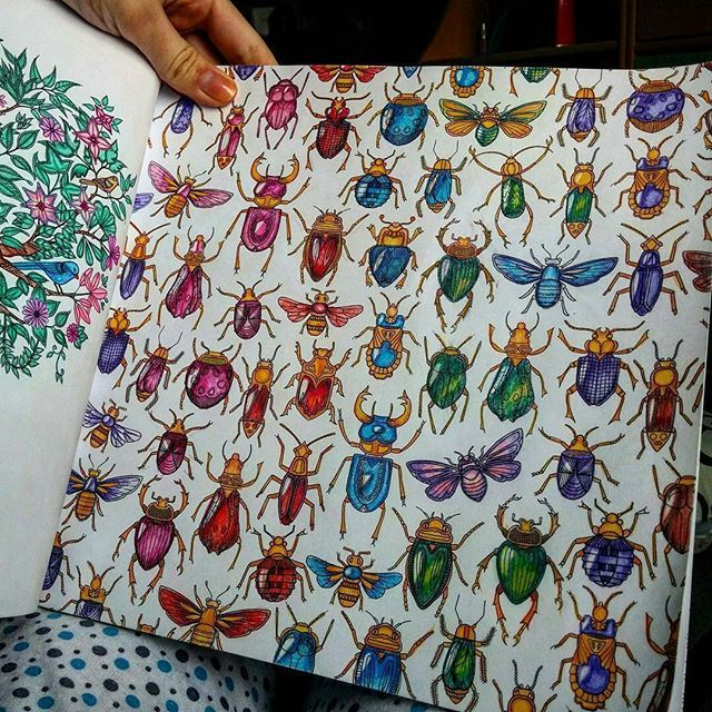 Johanna Basford Secret Gardens Beetles Colouring In