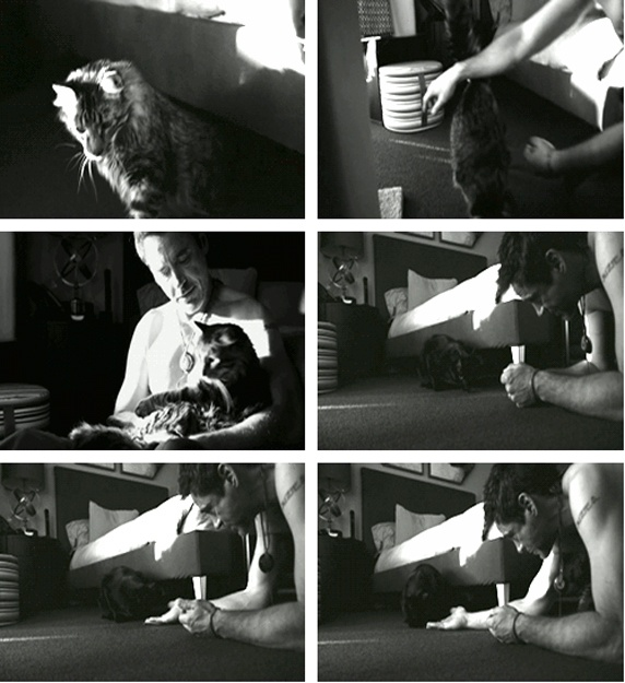 """RDJ and his cats, Monty and Dart (from the film """"New Life"""")"""