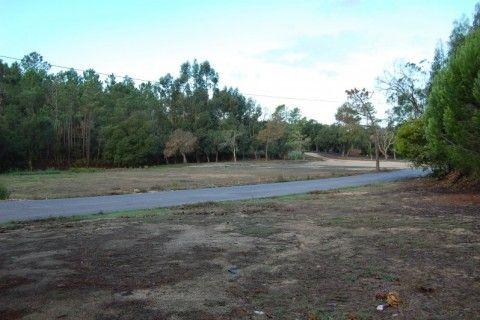 Orçamento Participativo: Parque verde da Ermegeira