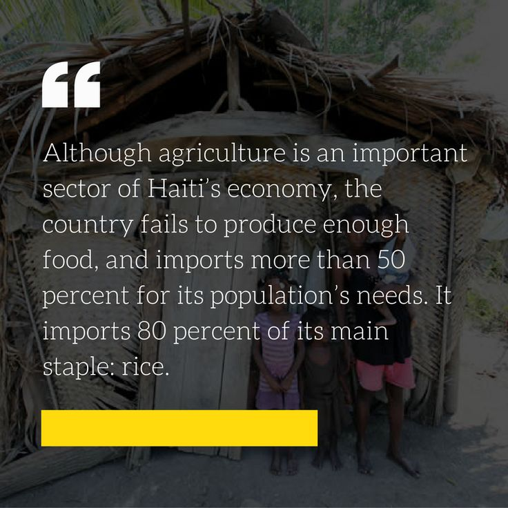80% of Haiti's needs are import. It's economy at its lowest. Visit our website and learn more how to help. #Addo #Haiti #Poverty #charity #donation #love #help #giving