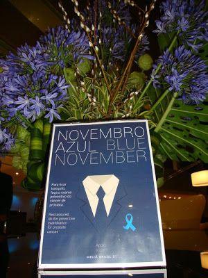 ♥ Meliá Hotels International Brasil adere à campanha Novembro Azul e realiza ações nos hotéis no Brasil ♥  http://paulabarrozo.blogspot.com.br/2016/11/melia-hotels-international-brasil-adere.html