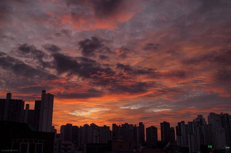 서울에서 바라본 백만불 일출 :: 네이버 블로그  모네의 해돋이나 일출 명소들을 떠올려 보면 대게 산이나 강, 바다를 배경으로 한다. 정작 시험이나 과제로 밤을 세거나 문뜩 새벽 일찍 눈을 뜨게 되는 날 보게 되는 해돋이는 이렇게 도시의 일상을 배경으로 하는데 말이다. 생각해보면 도시를 좋아하는 내게는, 도시의 해돋이도 충분한 감흥을 주는 것 같다.