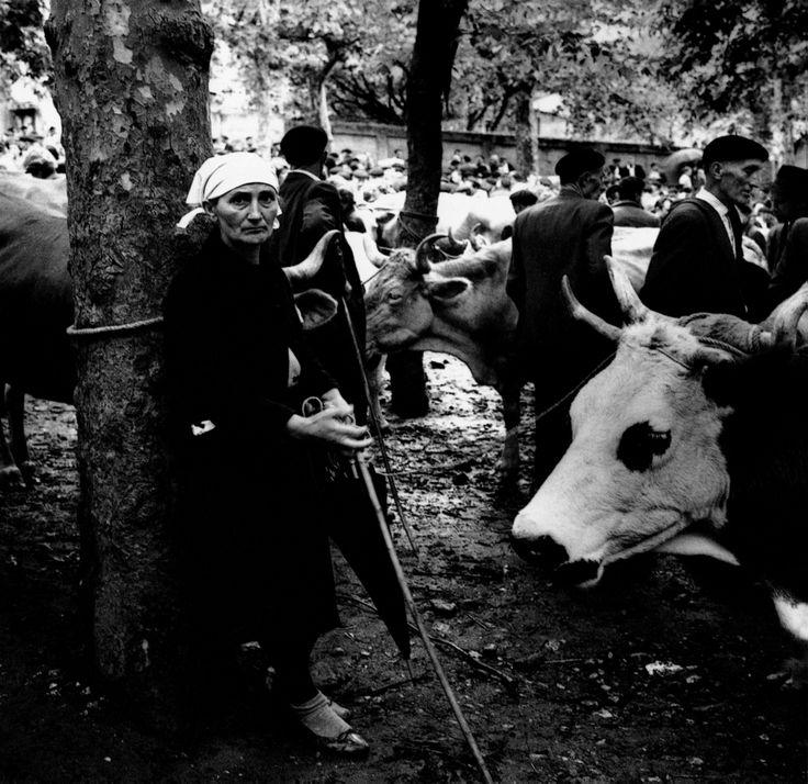 Jean Dieuzaide, Feira, Betanzos, A Coruña, 1961.