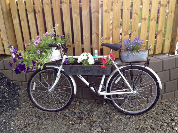 Sykkel i oppkjørselen