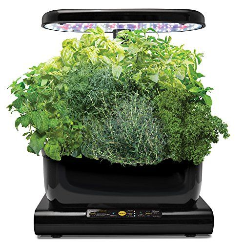 Miracle-Gro AeroGarden Harvest with Gourmet Herb Seed Pod... https://www.amazon.co.uk/dp/B015SROO4C/ref=cm_sw_r_pi_dp_x_5CB6zbN08EP15