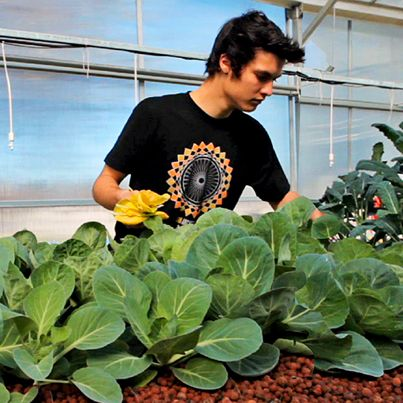 What is aquaponics? Watch how this high school student used it, along with math, biology, and economics, to build a sustainable source of vegetables for his school's cafeteria.