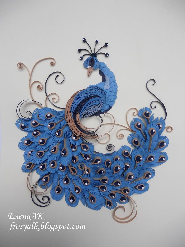 155 best quilling peacocks images on pinterest paper for How to quilling art