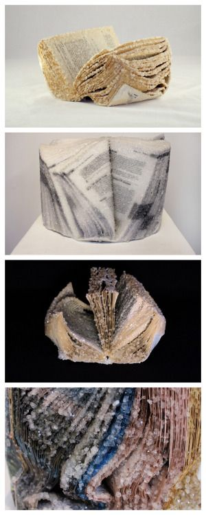 Make Your Own Crystallized Book Sculptures These Crystallized Book Sculptures were made by Alexis Arnold from old books, magazines, and computer manuals. She used the Borax Crystal Method to make these sculptures. When I saw these crystallized book sculptures on Colossal I knew I had to post the DIY version I posted last year from the blog: Stuff you Can't Have. You can find the DIY Crystallization with Borax Tutorial from Stuff You Can't Have here. Growing crystals with Borax bought ...