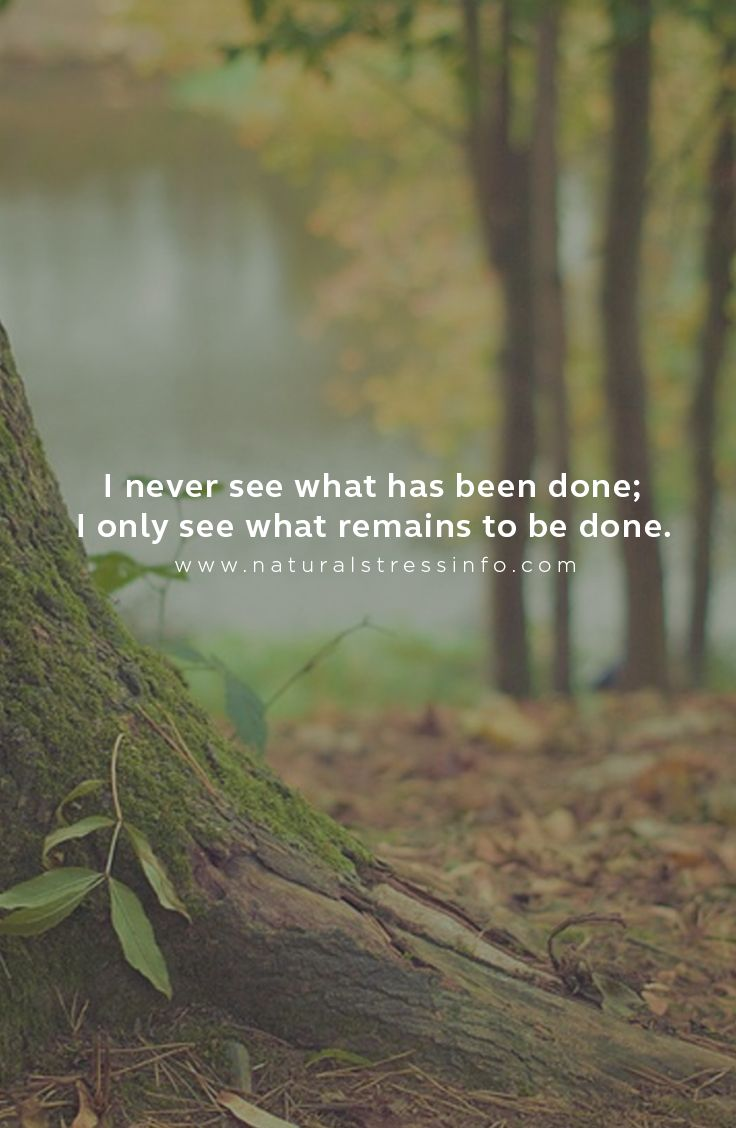 I never see what has been done; I only see what remains to be done.  #stress #stressfree #motivation #antistress #nostress #beatstress #stressed #depression #beatdepression  #anxiety #moods #stressreliever #stressful #inspirationalquotes #stressrelief #meditation