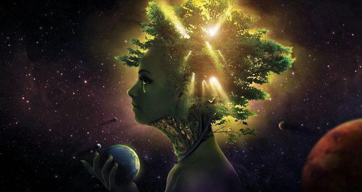 La permaculture est une promesse d'avenir pour la santé des hommes et celle de la planète, si cela vous intéresse : il va falloir essayer un jour !