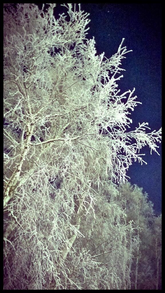 Talvinen iltahetki Tampereella