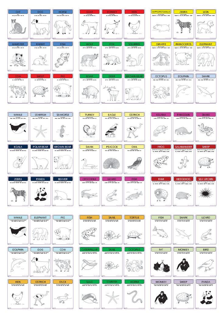 Deux jeux (7 familles et 20 familles) sur la thématique des animaux en anglais.