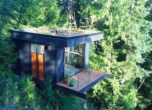 I love modern tree houses.