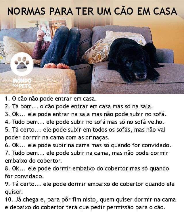 hehe <3 :) #petmeupet   #cachorro   #filhode4patas