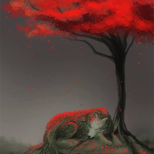 Скифия: Интересное: Вечерняя красная шапочка 17
