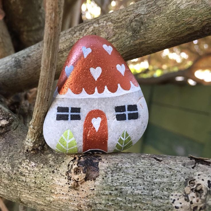 803 Fairy House for Shireen.