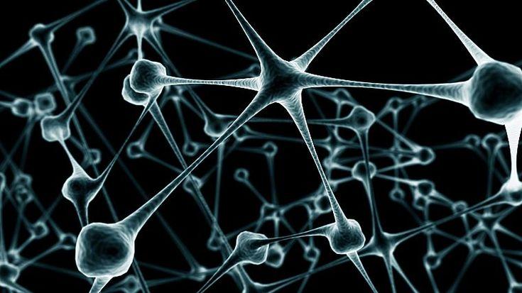 абстракции, нейроны - обои на рабочий стол