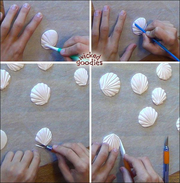 Modeling Chocolate Sand Dollars & Scallops