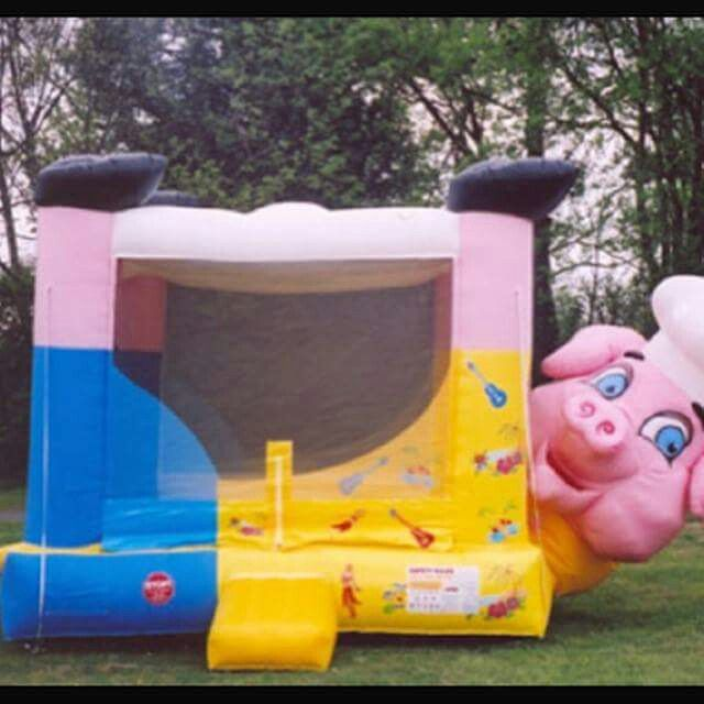 Inflatable Slide Clearwater Beach: 7 Best Dog Bounce House Images On Pinterest