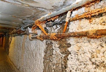 zawilgocone mury w piwnicy widoczne wykwity solne oraz korozja pęczniejąca tynku