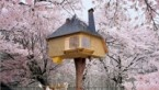 Flavorwire » A Photo Tour of Enchanting Tree Houses for Grown Ups
