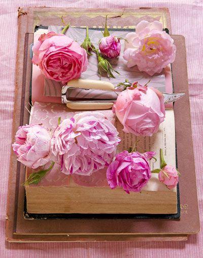 Ga voor een romantische tuinlook en kies rozen in verschillende roze tinten. Kijk, nu ze bloeien, goed om je heen welke soorten je het meeste aanspreken en schaf ze aan in het najaar. Dat is de beste periode om ze te planten. De grond is dan nog relatief warm, waardoor de wortels goed kunnen aanslaan. … (Lees verder…)