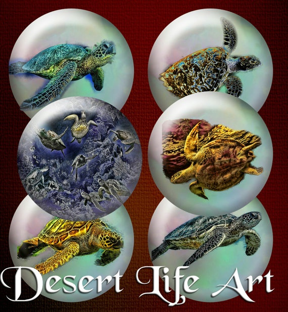 SEA TURTLES  Round Stickers Pendants Bottle Caps by DesertLifeArt, $4.50