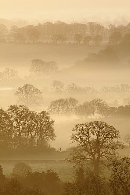 Pewsey Vale, Wiltshire by craig.denford on Flickr.