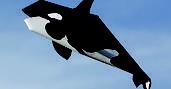 Duarte PaperArt #killer #whale #orca #paper $6.45