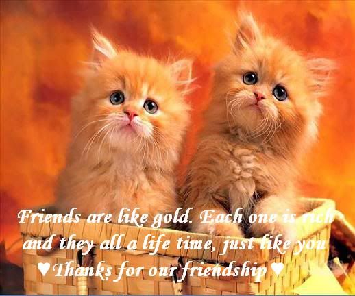 Beautiful Quotes For Best Friends With Images : Best images about friends on friendship