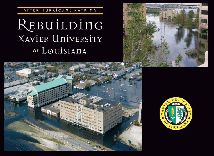university of louisiana admission essay Each louisiana state university online degree program successful completion of a criterion-based essay, admission essay valid louisiana type b or level 2.