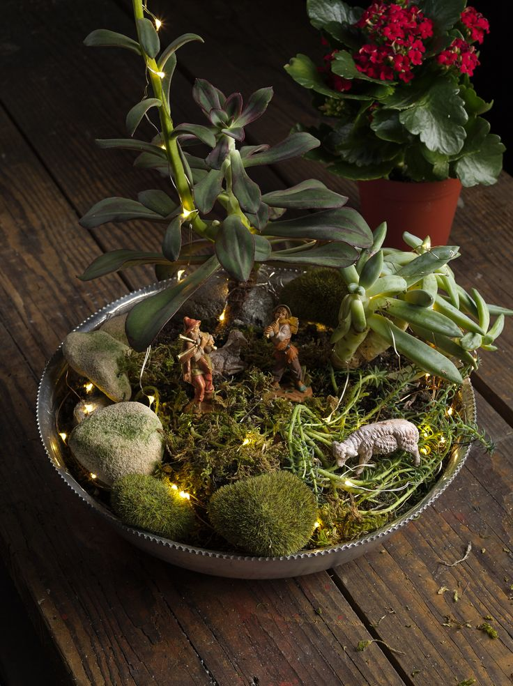 Have you ever heard of fairy gardens? Well how about a FONTANINI GARDEN! Have fun when creating your displays! @romaninc 's starry lights add to the beauty of this display! #garden #fairygarden #fontanini #roman #display #DIY #fun #creative
