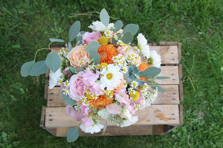 Fargerik sensommerbukett med vuvuzelaroser, dahlia, erteblomst, matricaria kamomille, cosmos, craspedia, eukalyptus og sukkulent // Colorful late summer bouquet with vuvuzela roses, dahlia, sweet pea, matricaria chamomilla, cosmos, craspedia, eucalyptus and sukkulent