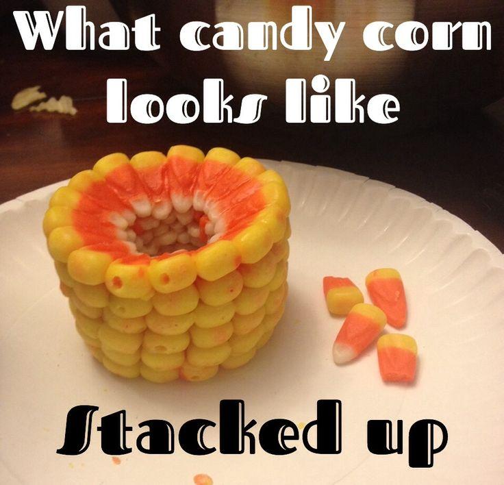 Best 25+ Candy Corn Cob Ideas On Pinterest