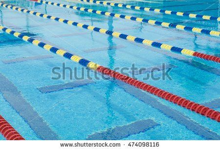 lanes in a competition olympic size swimming pool - Olympic Swimming Pool Lanes