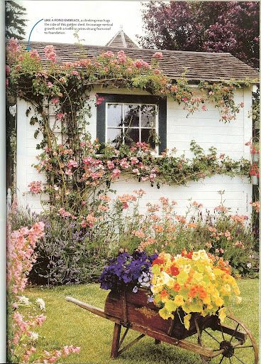 Rose covered potting shed. Like Snow White's little house. ;)