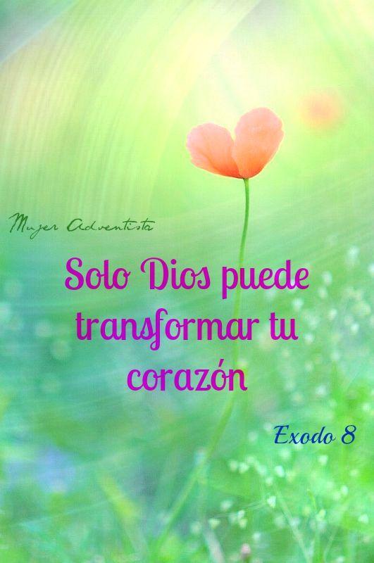 Solo Dios Puede Transformar Tu Corazn  Frases -4934