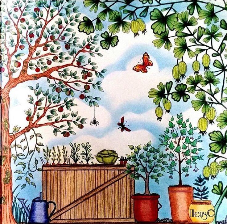 Johanna Basford Secret Garden Vegetables Colored Pencils Coloring Books Adult Gardens Prismacolor Drawings