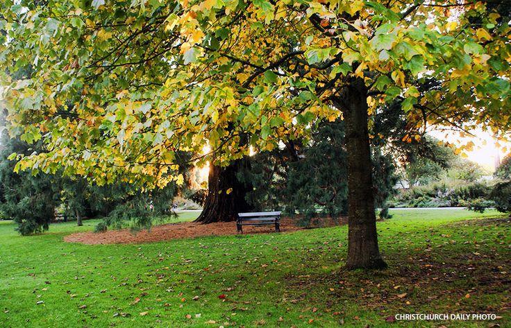 Hagley Park and the Botanic Gardens