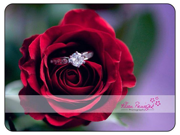 Valentine Question???? Rhian Pieniazek Photography.