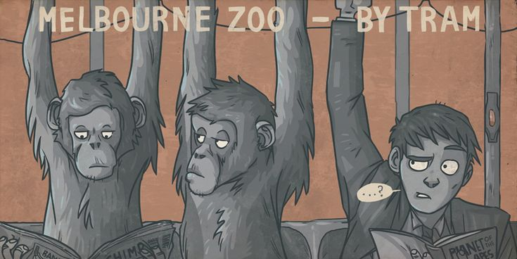 Zoo by tram by ekzotik.deviantart.com on @deviantART