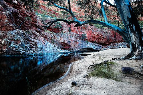 Ormiston Gorge in central Australia.  Landscape Photography Workshops | Australian Fine Art Landscape Photography.