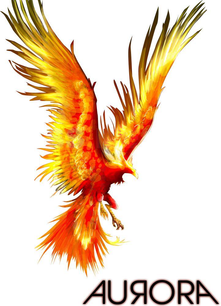 the phoenix | Render Fantastique - Renders Phenix Phoenix Faisan Cendres Ardent ...                                                                                                                                                                                 More