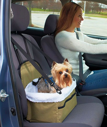 Portable Pet Booster Seat