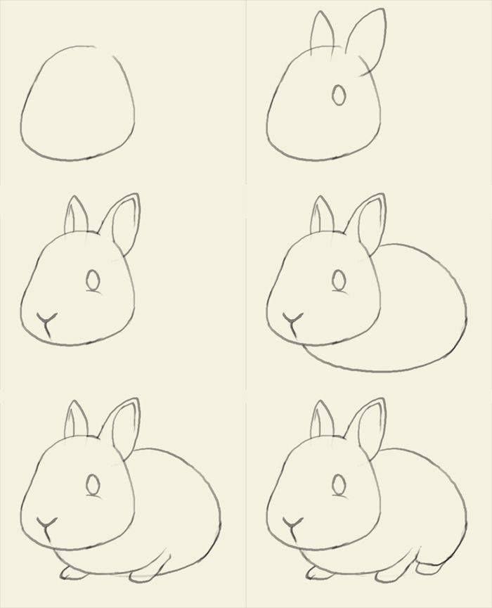Cara Mudah Menggambar Hewan Yang Mungkin Tak Pernah Kamu Pelajari C 2016 Brilio Net Hewan Gambar Hewan Tutorial Seni