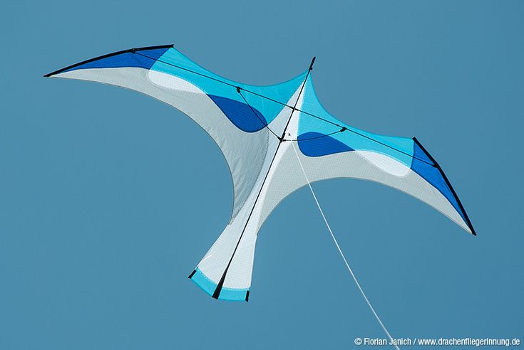 A semi-realistic bird kite with delightfully clean and flowing lines. I like it a lot! T.P. (my-best-kite.com)