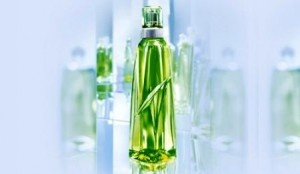 Daca exista o colonie spumoasa si irezistibila care sa le bata cumva de la distanta pe toate celelalte create vreodata, atunci despre Mugler Cologneeste vorba,cu siguranta! Lansata in 2001 de Thierry Mugler si conceputa si marketata ca un parfum unisex, Mugler Cologne este paradisul olfactiv