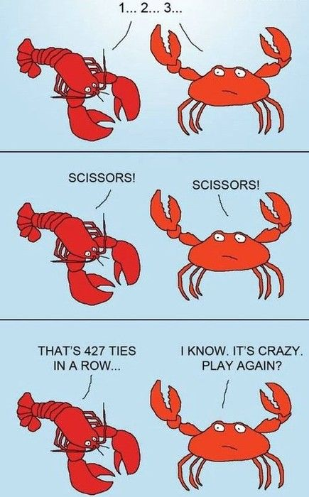 drat, scissors again. : Funny Image, Rocks Paper Scissors, Funny Pics, Funny Pictures, Animal Humor, Funny Quotes, Funny Photos, Funny Animal, Crabs