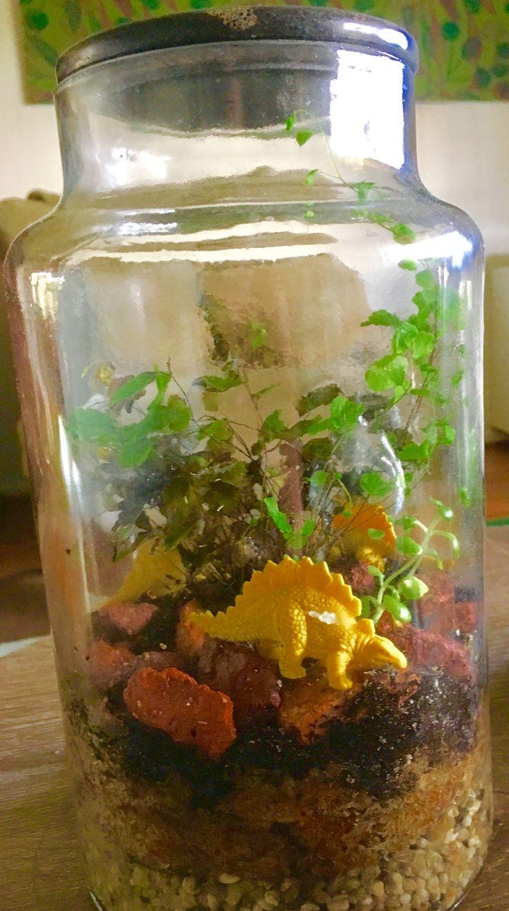 I made this dinosaur terrarium for my son
